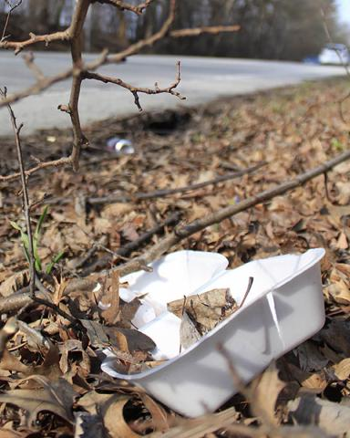 The enemy. This food container and beverage can were tossed along side Vollmer Road just west of Irons Oaks Environment Learning Center.